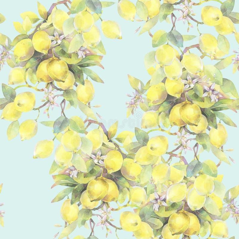 Illustrazione dipinta a mano dell'acquerello modello senza cuciture con gli elementi del ramo di limone illustrazione vettoriale