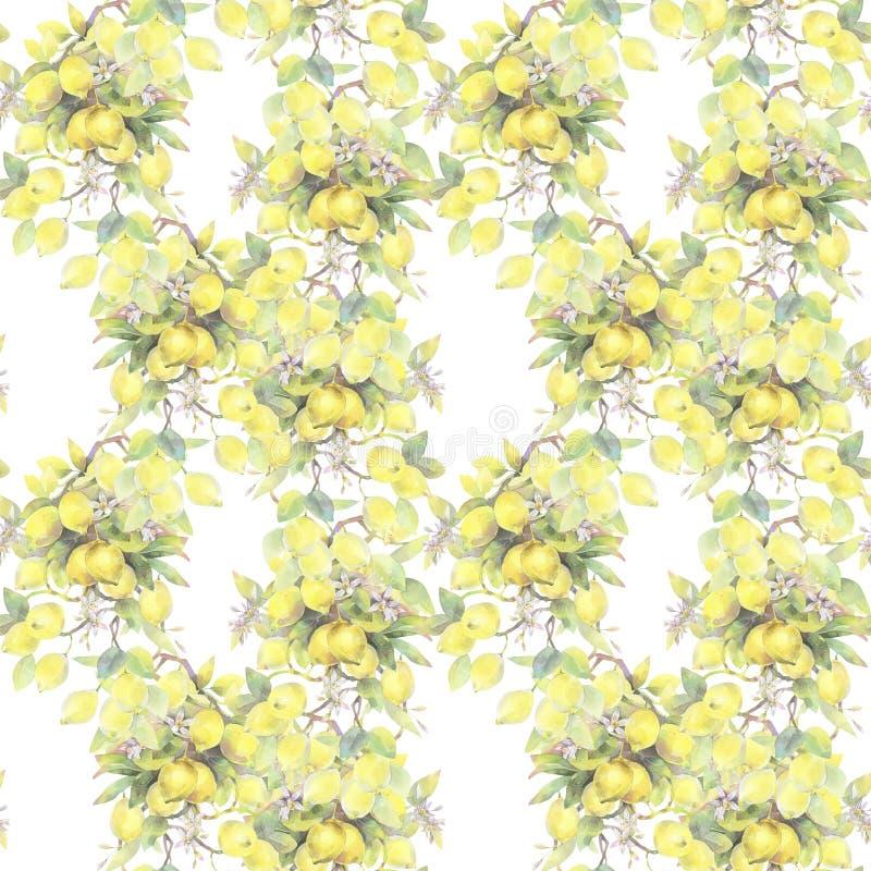 Illustrazione dipinta a mano dell'acquerello modello senza cuciture con gli elementi del ramo di limone illustrazione di stock