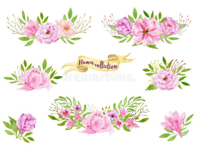Illustrazione disegnata a mano del mazzo dell'acquerello Botanico isolato si avvolge dei rami e delle foglie verdi del fiore Prim royalty illustrazione gratis