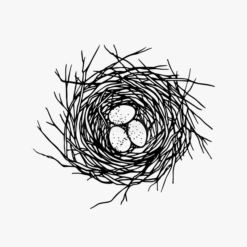 Illustrazione disegnata a mano del nido immagine stock libera da diritti