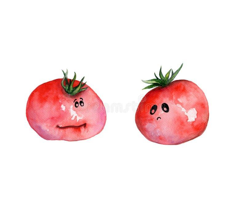 Illustrazione disegnata a mano dell'acquerello con i pomodori divertenti con gli occhi ed il carattere royalty illustrazione gratis