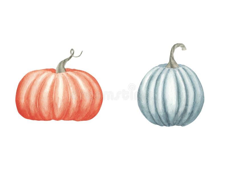 Illustrazione disegnata a mano dell'acquerello Metta con le zucche arancio mature illustrazione di stock