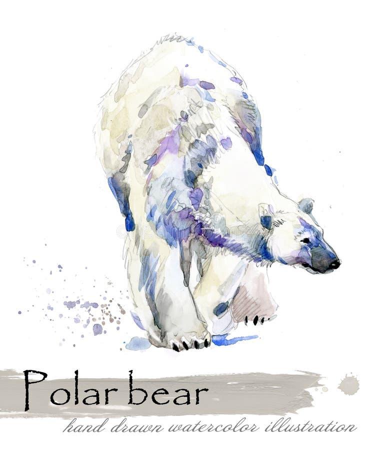 Illustrazione disegnata a mano dell'acquerello dell'orso polare royalty illustrazione gratis