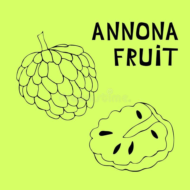 Illustrazione disegnata a mano della mela cannella, muricata, graviola, anona, annona royalty illustrazione gratis
