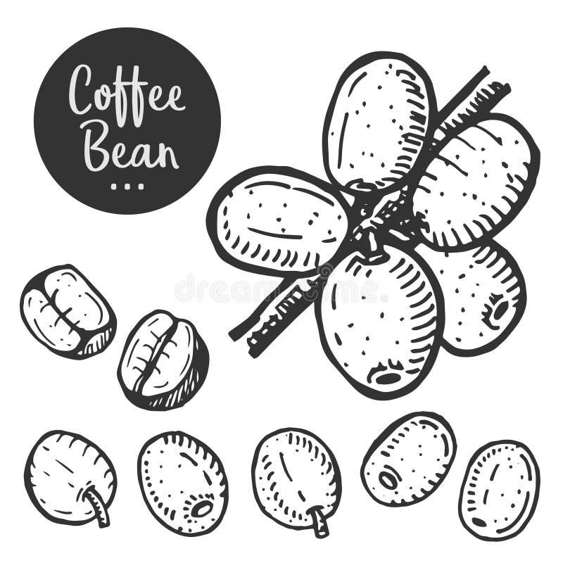 Illustrazione disegnata a mano di caffè royalty illustrazione gratis