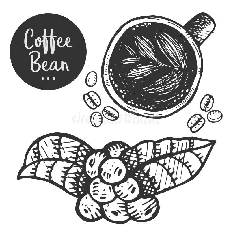 Illustrazione disegnata a mano di caffè illustrazione di stock