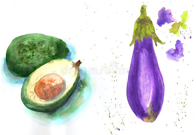 Illustrazione disegnata a mano di schizzo dell'acquerello dell'avocado e della melanzana su fondo bianco royalty illustrazione gratis