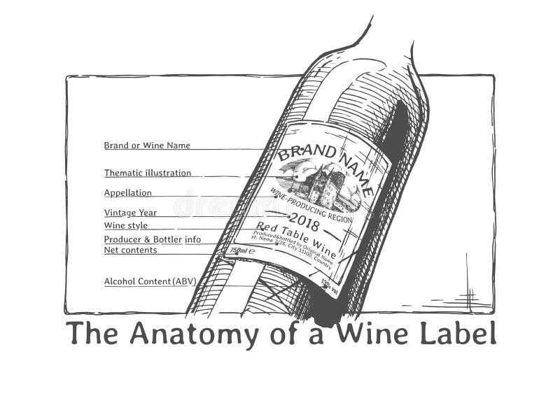 Illustrazione disegnata a mano di una bottiglia di vino illustrazione di stock