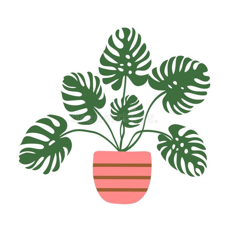 Illustrazione disegnata a mano di vettore della pianta da appartamento conservata in vaso di monstera in vaso a strisce rosa Giun royalty illustrazione gratis