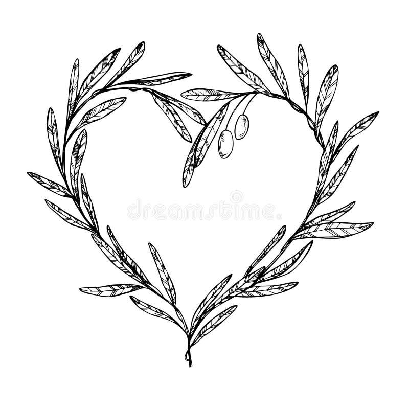 Illustrazione disegnata a mano di vettore - il ramo di ulivo, cuore ha modellato la corona illustrazione vettoriale