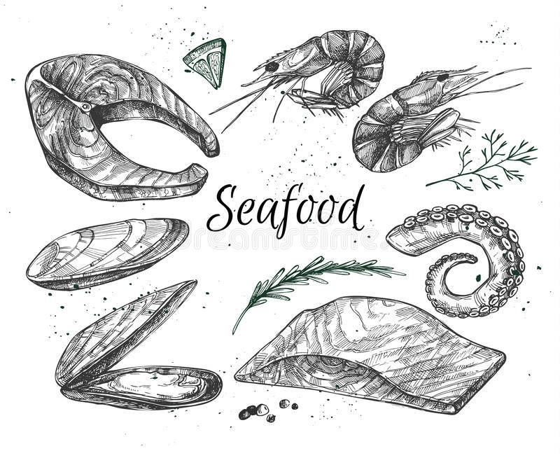 Illustrazione disegnata a mano di vettore - insieme di frutti di mare illustrazione vettoriale