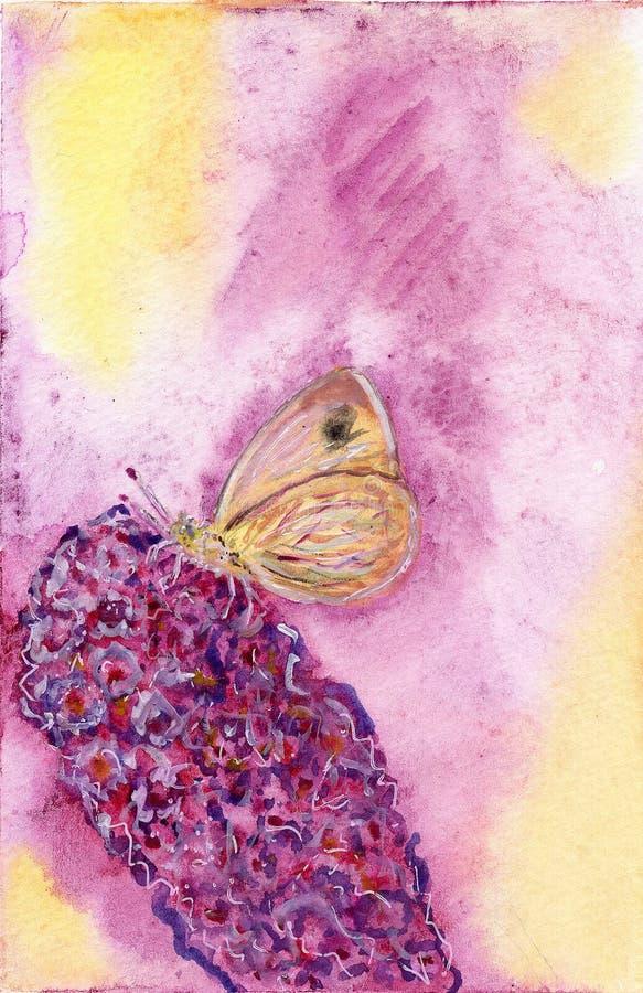 Illustrazione gialla dell'acquerello di estate di rosa del fiore di farfalla royalty illustrazione gratis