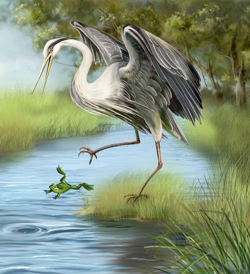 Illustrazione, gru che cerca una rana nell'acqua. royalty illustrazione gratis
