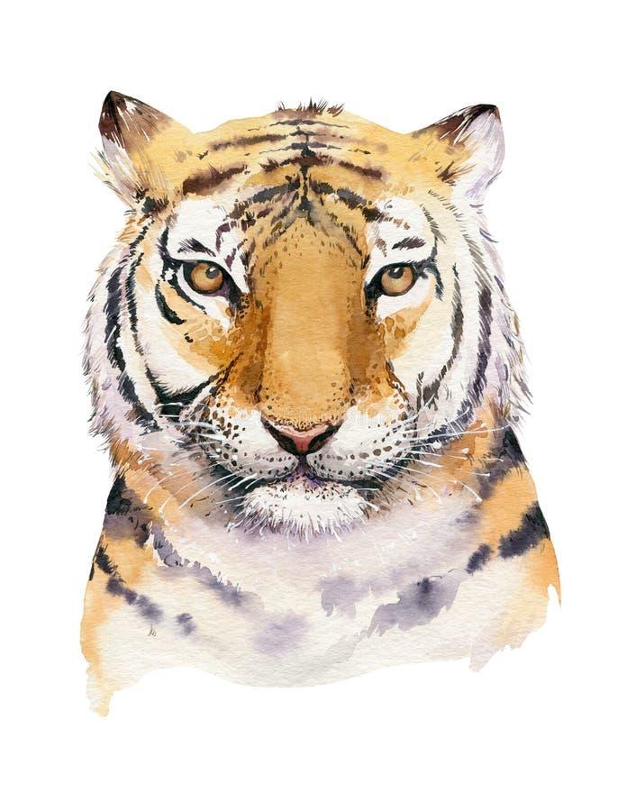 Illustrazione isolata animale della tigre tropicale dell'acquerello, animali axotic del gatto selvaggio monstera della pianta, ma illustrazione vettoriale