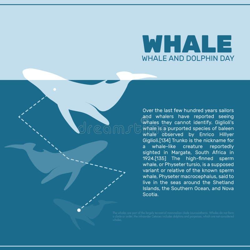 Illustrazione isolata di vettore della balena Mammifero dell'oceano sull'immagine di sfondo blu royalty illustrazione gratis