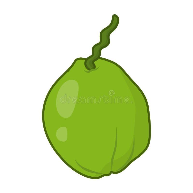 Illustrazione isolata noce di cocco illustrazione di stock