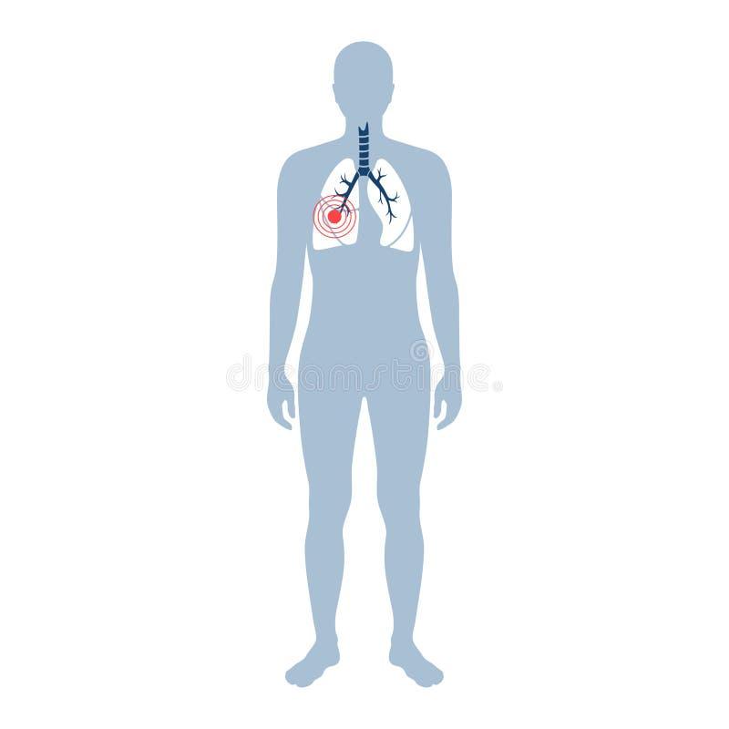 Illustrazione isolata vettore del polmone illustrazione vettoriale
