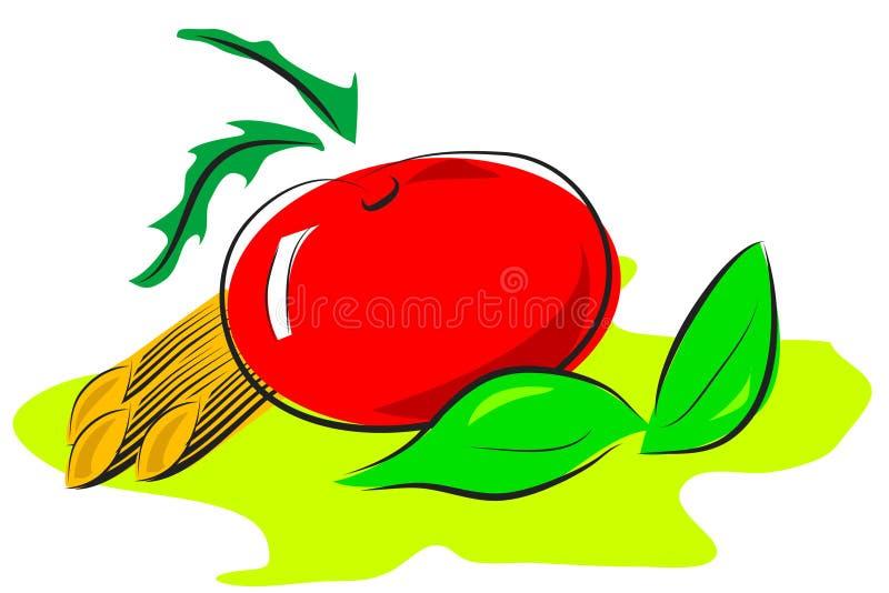 Illustrazione italiana dell'alimento illustrazione di stock