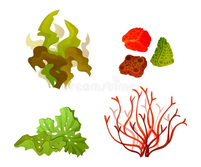 Illustrazione marina subacquea dell'insieme di vettore della siluetta della flora dell'alga di corallo illustrazione vettoriale