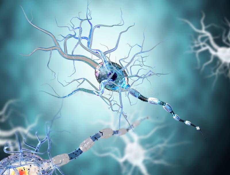 Illustrazione medica, cellule nervose illustrazione di stock