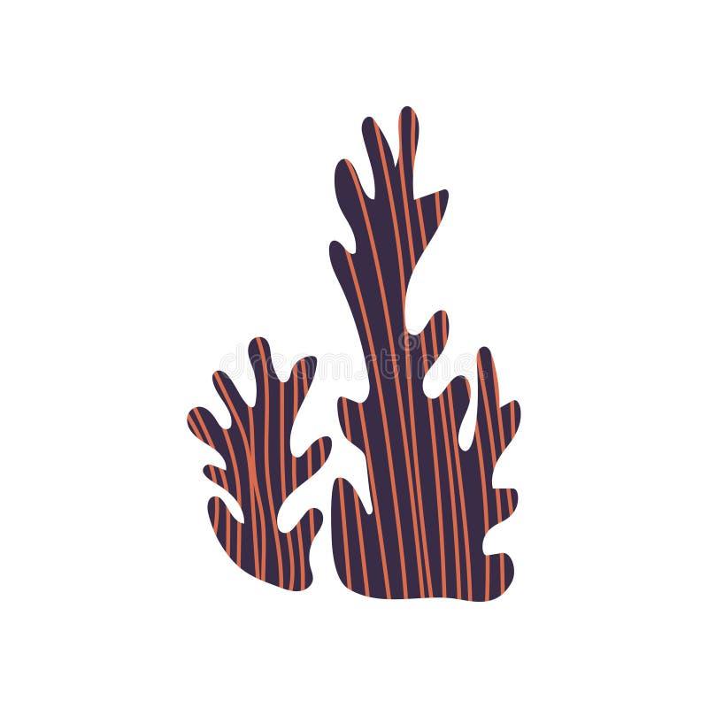 Illustrazione naturale subacquea di vettore della pianta dell'alga su fondo bianco royalty illustrazione gratis