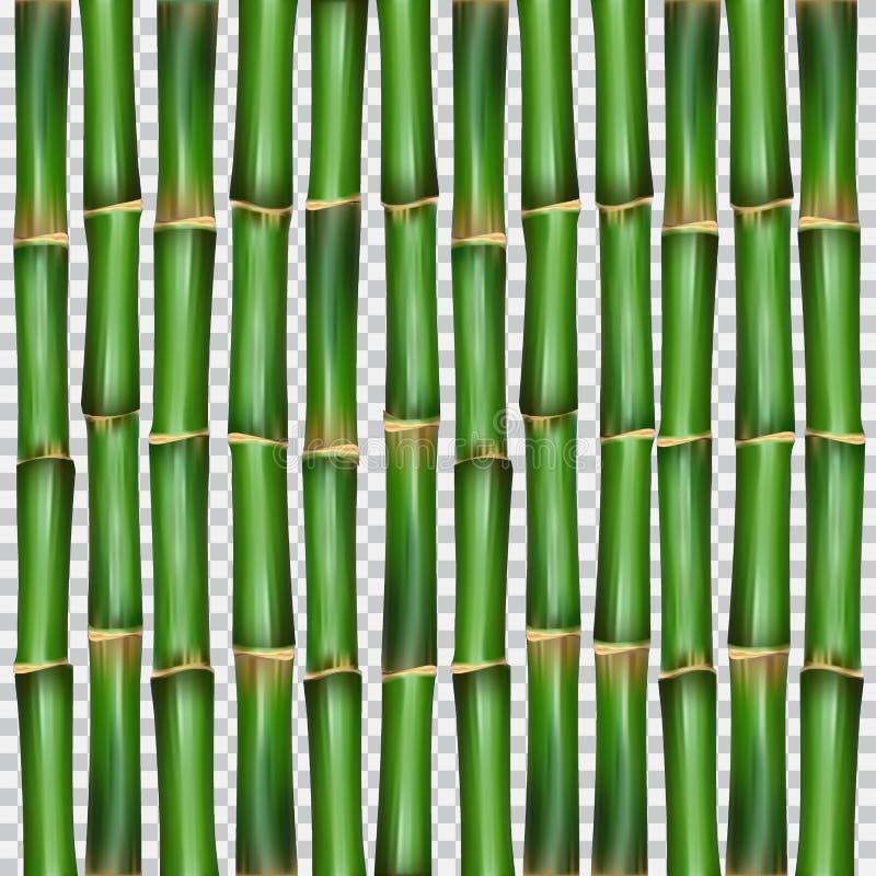 Illustrazione orientale di vettore della carta da parati dell'erba di bambù illustrazione di stock