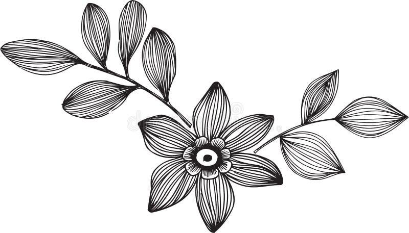 Illustrazione ornamentale di vettore del fiore illustrazione vettoriale