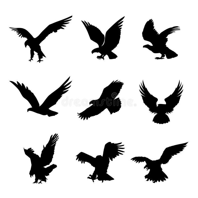 Illustrazione piana di vettore dell'elemento di progettazione dell'icona del nero della siluetta di Eagle Falcon Bird Hawk Animal fotografia stock