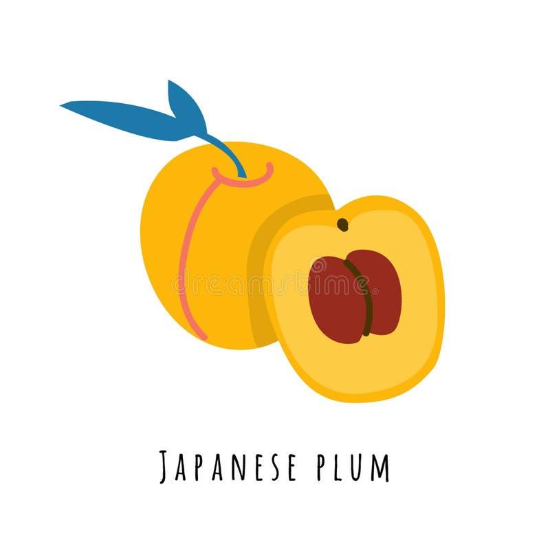 Illustrazione piana di vettore della frutta della prugna giapponese royalty illustrazione gratis