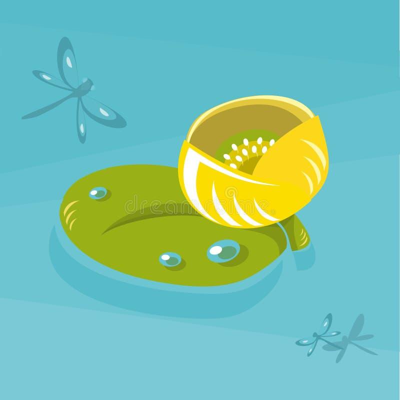 Illustrazione piana di vettore della ninfea gialla Isolato su priorità bassa bianca Elemento per progettazione royalty illustrazione gratis