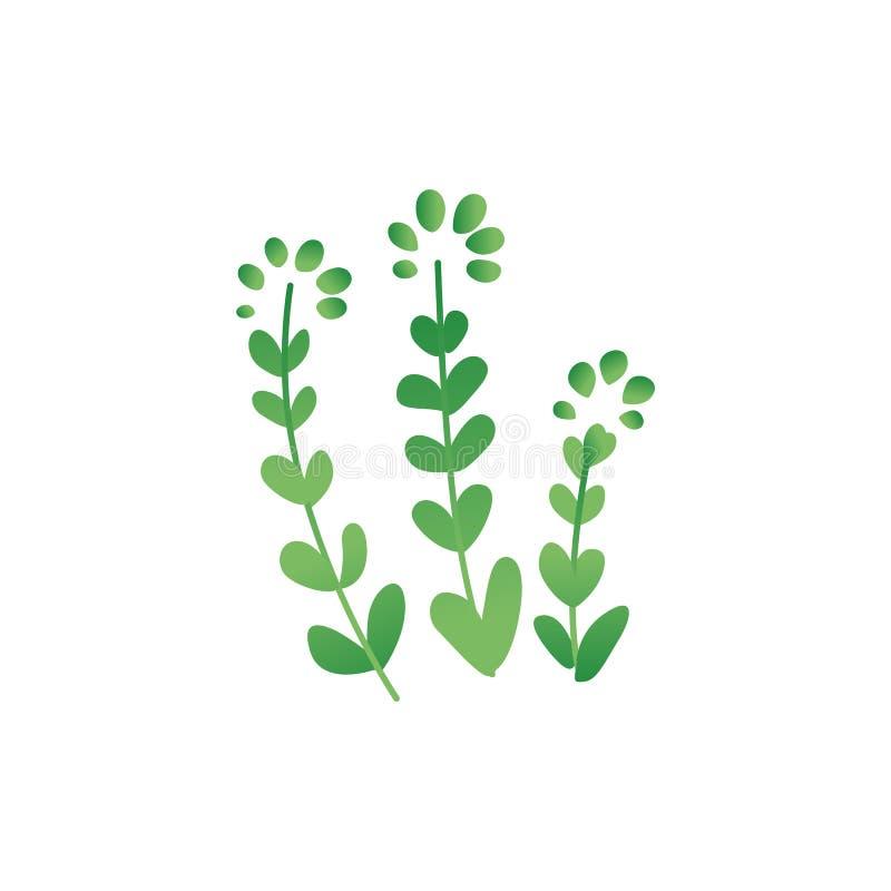 Illustrazione piana di vettore della pianta tropicale o preistorica di periodo isolata su bianco royalty illustrazione gratis
