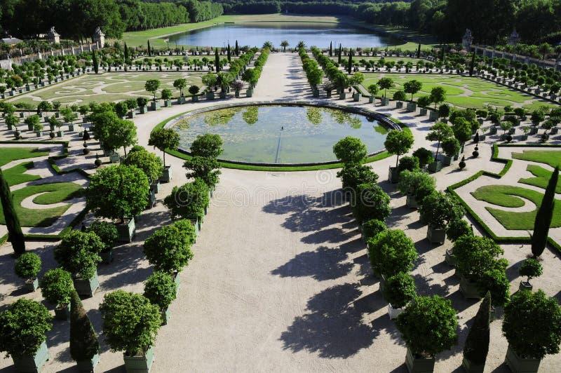 Illustrazione reale del giardino fotografia stock