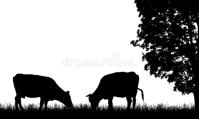 Illustrazione realistica con la siluetta due della mucca sul pascolo, dell'erba e dell'albero, isolati su fondo bianco, vettore illustrazione vettoriale