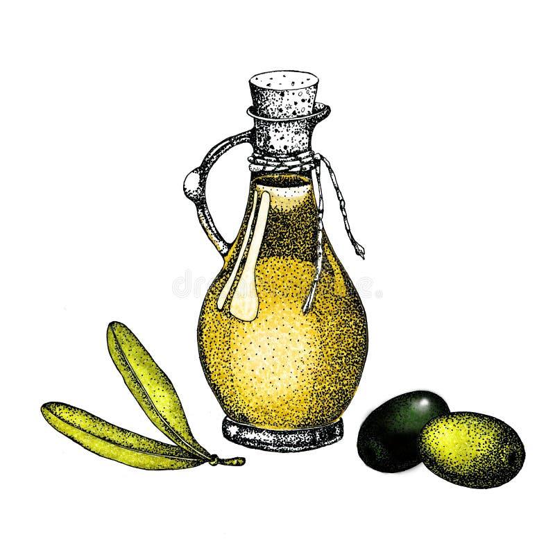 Illustrazione realistica del ramo di olive nere e verdi isolato su fondo verde Progettazione per olio d'oliva, cosmetici naturali illustrazione di stock