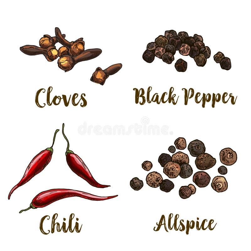 Illustrazione realistica di schizzo di colore pieno di quattro spezie, dei chiodi di garofano, del pepe nero e del peperoncino ro royalty illustrazione gratis