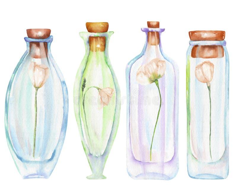 Illustrazione romantica e bottiglie dell'acquerello di favola con i fiori teneri dentro royalty illustrazione gratis