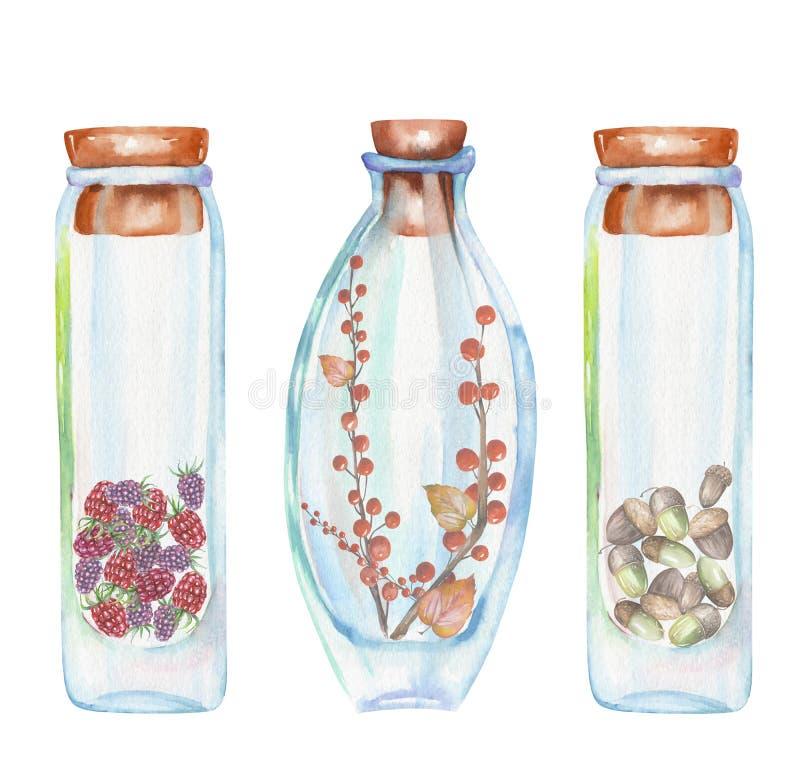 Illustrazione romantica e bottiglie dell'acquerello di favola con la fragola e lamponi, foglie di autunno e rami rossi del berrie illustrazione di stock