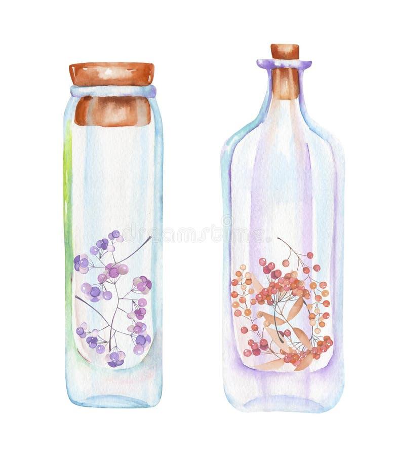 Illustrazione romantica e bottiglie dell'acquerello di favola con le foglie di autunno ed i rami rossi delle bacche dentro illustrazione di stock