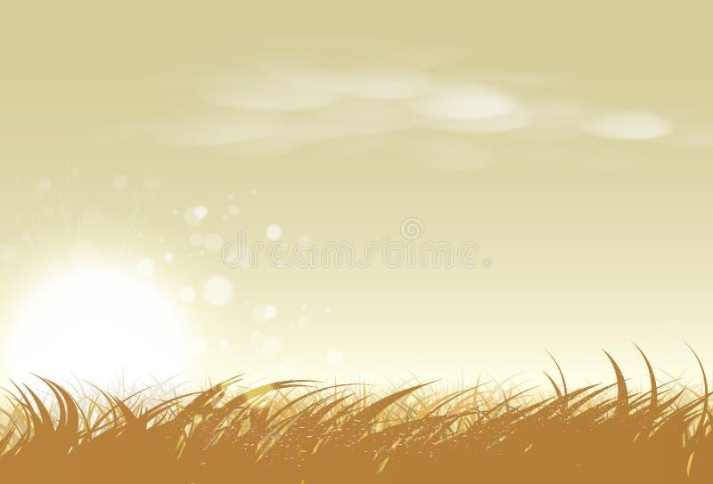 Illustrazione rurale di vettore dell'azienda agricola di tramonto, del riso e dell'erba del paesaggio illustrazione vettoriale