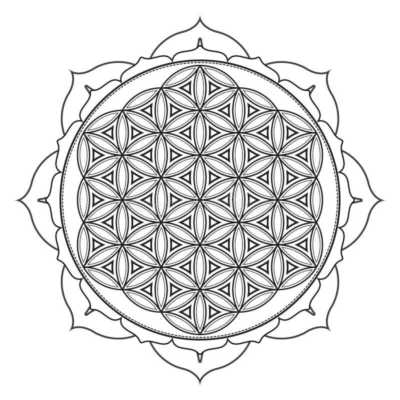 illustrazione sacra della geometria della mandala di vettore royalty illustrazione gratis