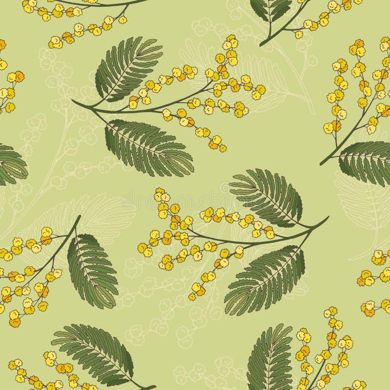 Illustrazione senza cuciture del modello di schizzo giallo verde grafico della mimosa illustrazione di stock
