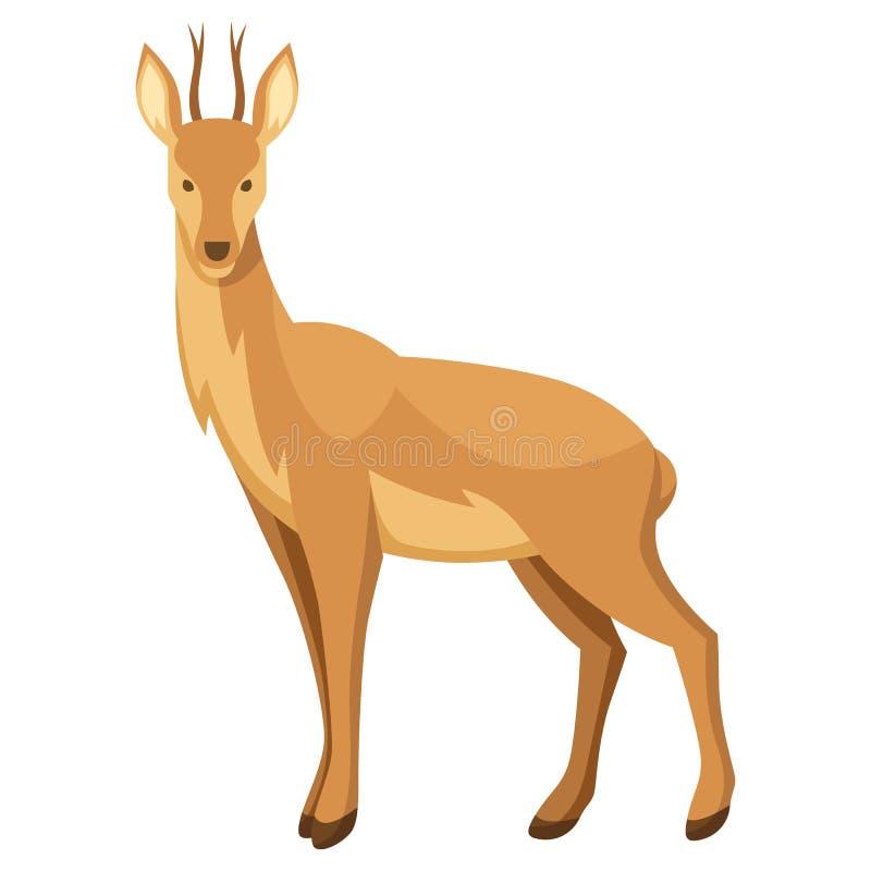 Illustrazione stilizzata dei cervi Animale della foresta del terreno boscoso su fondo bianco illustrazione vettoriale
