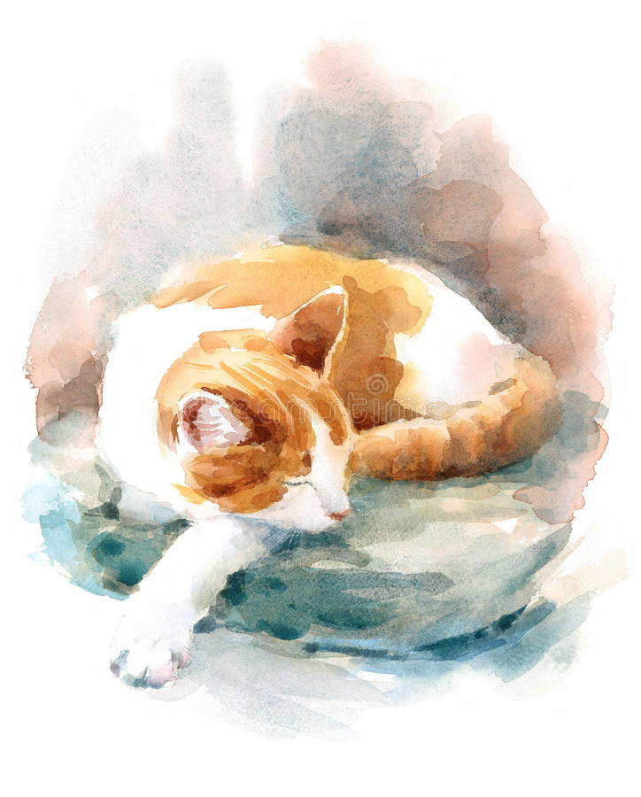Illustrazione sveglia del ritratto di Kitten Sleeping Watercolor Pet Cat dipinta a mano illustrazione di stock