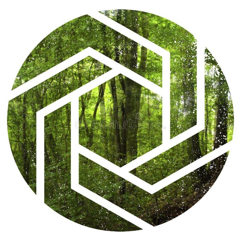 Illustrazione tropicale della giungla con la figura geometrica fotografia stock libera da diritti