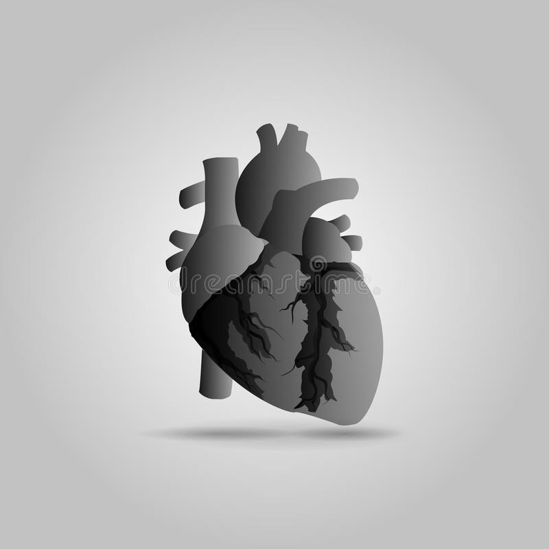 Illustrazione umana di vettore del cuore immagine stock