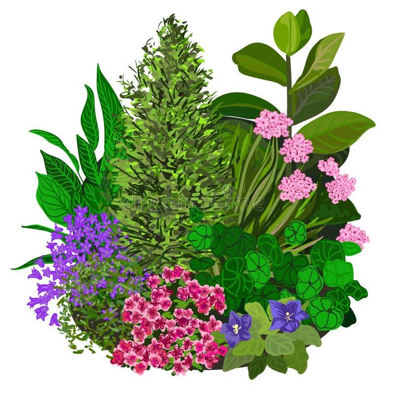 Illustrazione variopinta di vettore di flowerbad illustrazione di stock