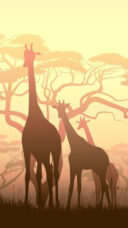 Illustrazione verticale delle giraffe selvagge nella savanna africana di tramonto royalty illustrazione gratis