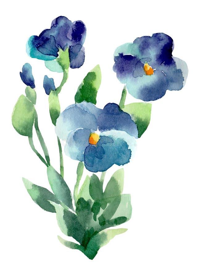 Illustrazioni dell'acquerello del fiore viola illustrazione di stock