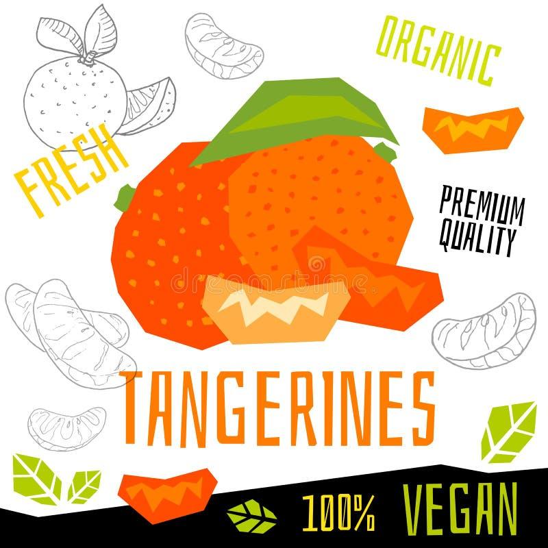 Illustrazioni disegnate a mano dei mandarini dell'agrume dei pompelmi di frutti del vegano di vettore organico fresco dell'alimen illustrazione vettoriale