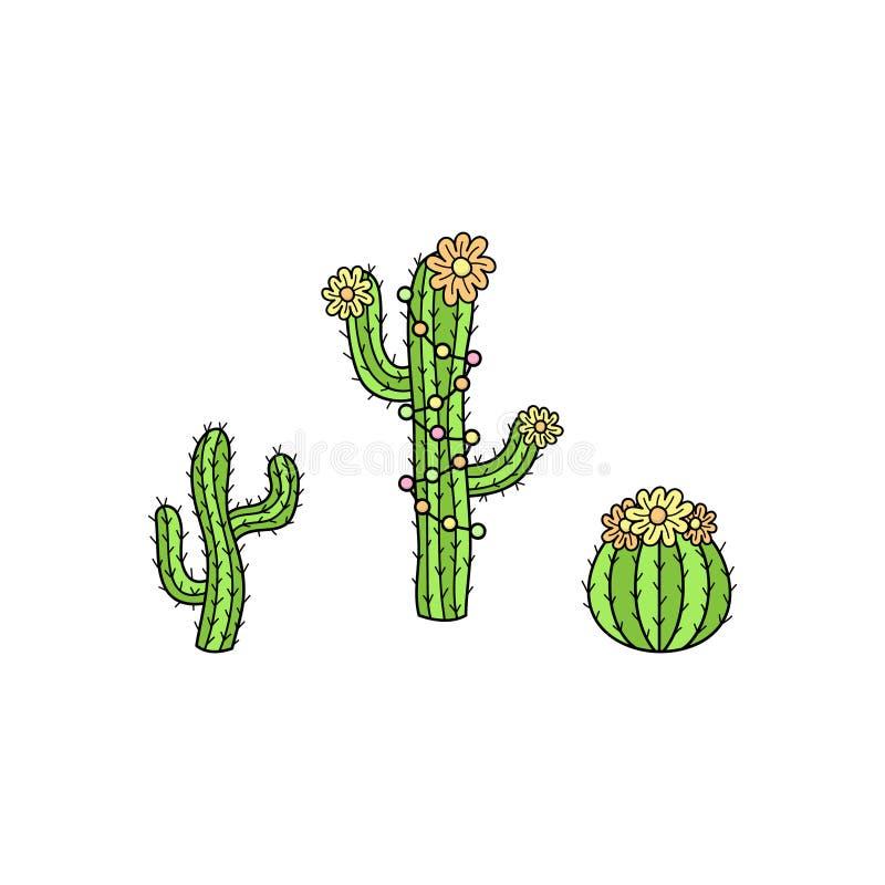 Illustrazioni disegnate a mano di vettore della raccolta del cactus illustrazione di stock